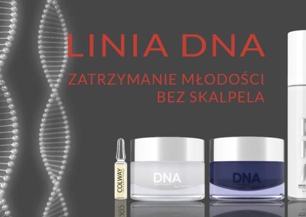 KOLAGEN NATYWNY LINIA DNA